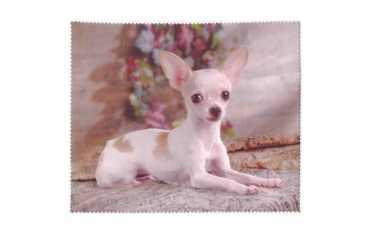 Ściereczka mikrofazowa - Chihuahua