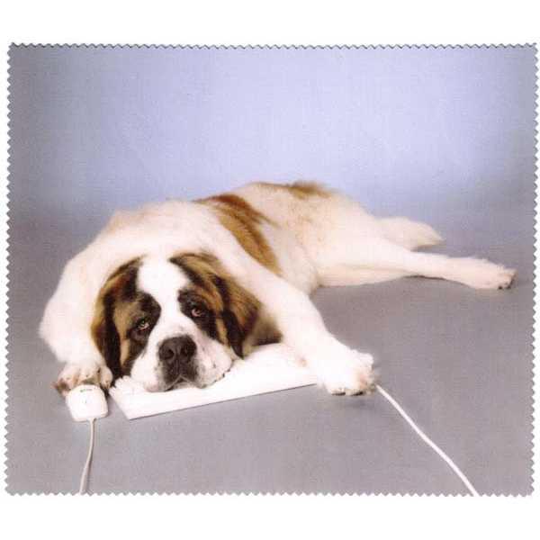 ściereczka mikrofazowa do okularów z psem leżący bernardyn