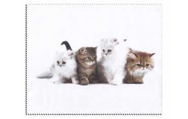 Ściereczka mikrofazowa - cztery kociaki