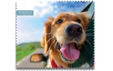 Ściereczka mikrofazowa - pies w oknie samochodu