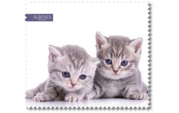 Ściereczka mikrofazowa - dwa szare kociaki